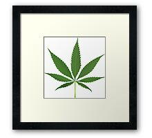 Cannabis leaf vector Framed Print