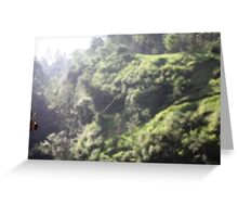 Spider of Merapi Greeting Card
