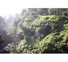 Spider of Merapi Photographic Print