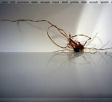 bodylanguage in nature4 by eewA