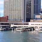 Circular Quay  on a Small Scale by Debbie Thatcher