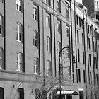 Bond-Metcalfe Building - The Rocks by Debbie Thatcher