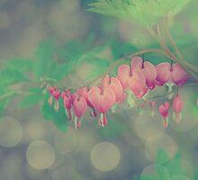 Hopeful by Softly