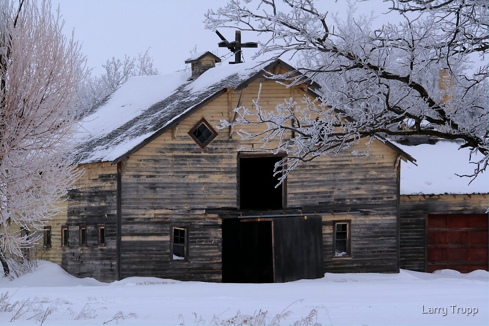 Rural Winter Barn by Larry Trupp