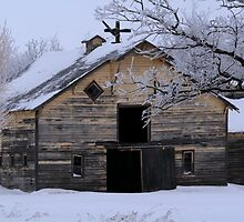 Rural Winter Barn by Larry Trupp