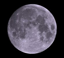 Full Moon  by Savannah Gibbs