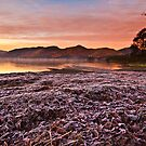 Sunrise over Derwent water on a frosty December morn' by Shaun Whiteman