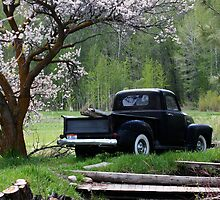 The Old Black Truck by Rob Marcroft