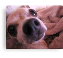 Bacon.......Do I Smell Bacon????? Canvas Print