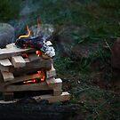 Firestarter by Michael Kelly