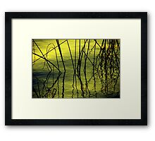 The Barriers Framed Print