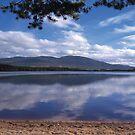 Loch Garten by derekwallace