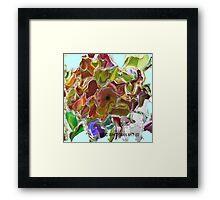 ( PUSS )  ERIC WHITEMAN  Framed Print
