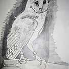 Barn Owl by coolart