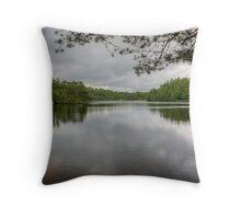High Dam In July Throw Pillow