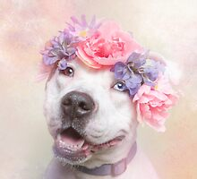 Flower Power, Cali by Sophie Gamand