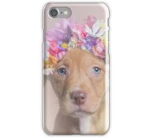 Flower Power, Rome iPhone Case/Skin