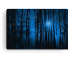 IN THE WOODS AT NIGHT Canvas Print