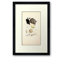 Coloured figures of English fungi or mushrooms James Sowerby 1809 0997 Framed Print