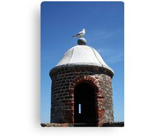 Seagull Turret Canvas Print