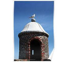 Seagull Turret Poster