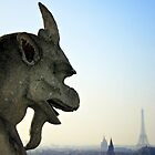 Paris by Mojca Savicki
