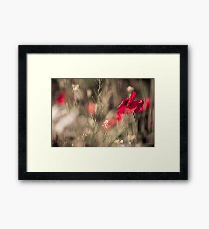 Poppy World Framed Print