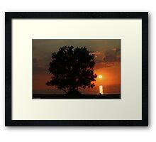 tree and sunset at warren dunes Framed Print