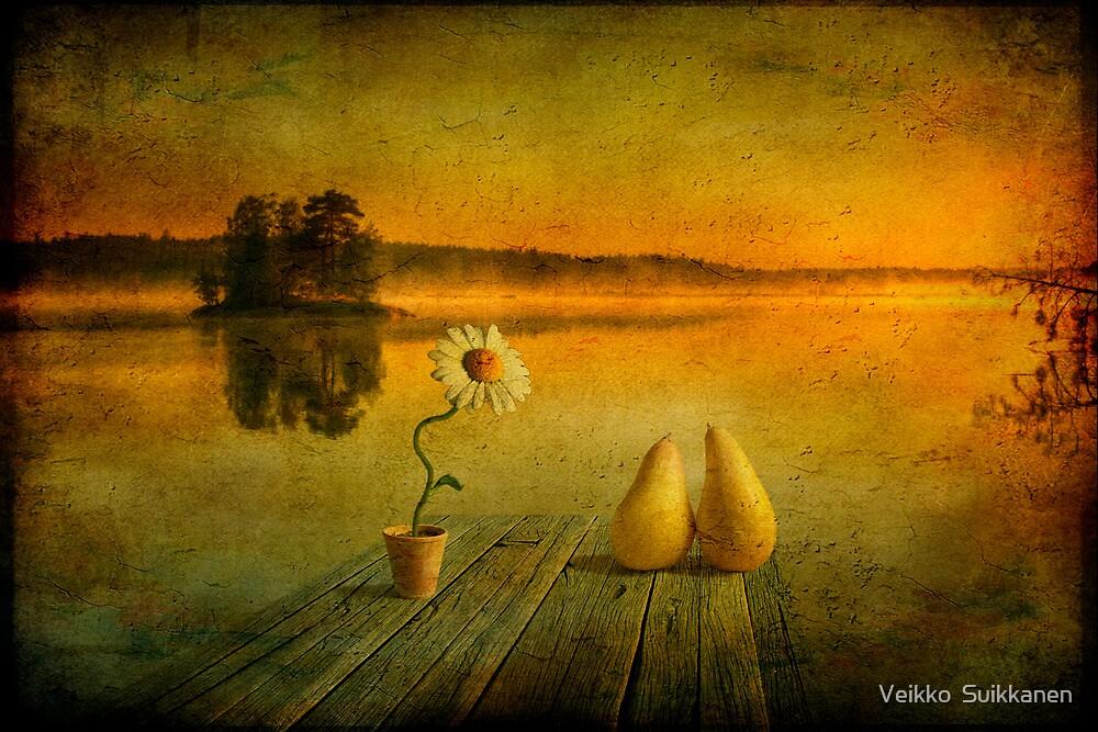 I love mornings by Veikko  Suikkanen