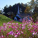 Virginia Countryside by mavaladez