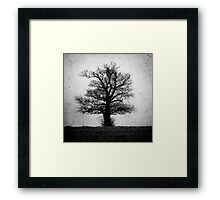the old man of geldeston Framed Print