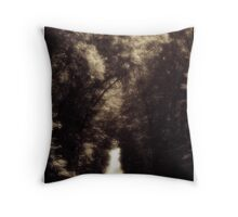 Goll Woods Country Road Wauseon Ohio Throw Pillow