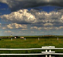 Pastoral View by Larry Trupp