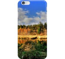 Autumnal Colors(Pano) iPhone Case/Skin