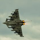 Typhoon - EuroFighter by Mick Smith