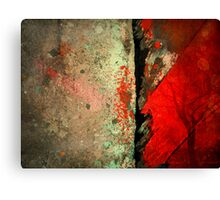 Two Halves Canvas Print