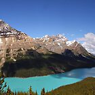 Beautiful Peyto Lake by Vickie Emms