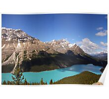 Beautiful Peyto Lake Poster