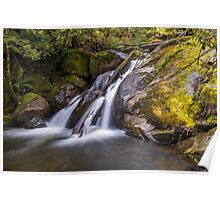 Taggerty River Lower Falls Poster