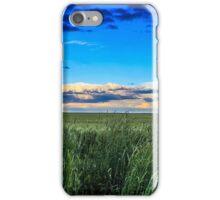 Elysium Fields iPhone Case/Skin