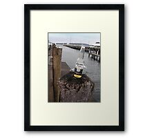 Hanging Out on Greenpoint Wharf  Framed Print