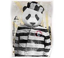 Prison Bear Poster