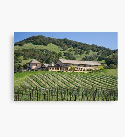 Winery  Canvas Print