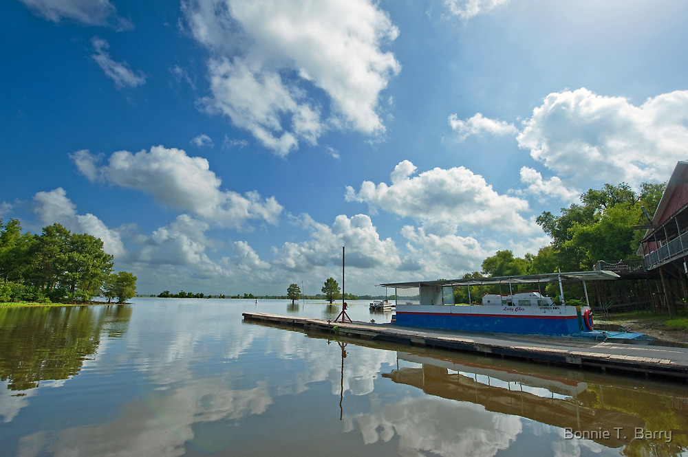McGee's Landing on the Atchafalaya Basin by Bonnie T.  Barry