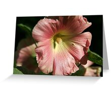 Another Hollyhock Parent Greeting Card