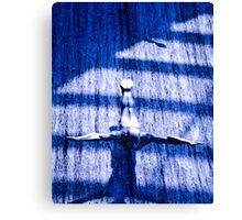 Azure Dive Canvas Print