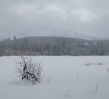 Lassen National Park - Manzanita Lake Covered With Ice & Snow by dwservingHim
