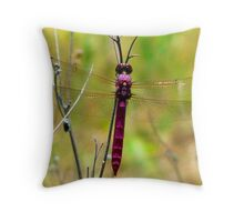 soaring sequins Throw Pillow