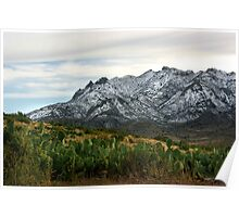 Winter in the Florida Mountains ~ New Mexico USA Poster
