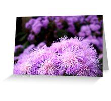 Purple Torch Greeting Card
